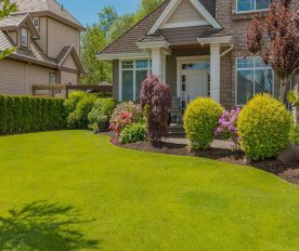 Landscaping 101 How To Create A Refreshing Garden